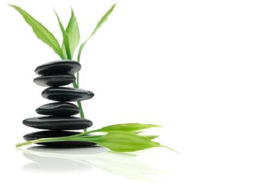 Plantas Baño Feng Shui:una barrer como un biombo plantas muebles si en el baño salta a la